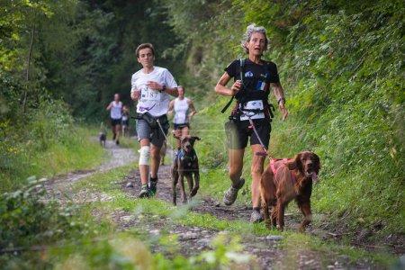 Photo pour FRANCE, SAINT COLOMBAN DES VILLARDS. AOÛT 2015 : Compétiteurs en course avec des chiens sur le sentier forestier des Rhônes Alpes, Trophée des Montagnes, La course de canicross la plus difficile . - image libre de droit