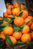 Oranges in a container belonging to a food stor