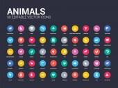 50 animals set icons such as ant eater ape armadillo baboon bedbug bison calf canary capybara simple modern isolated vector icons can be use for web mobile