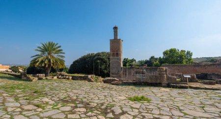 Photo pour Le Minaret de la mosquée de Chellah ou Sala Colonia est une nécropole fortifiée médiévale située à Rabat, au Maroc. Rabat est la capitale du Maroc, l'Afrique. Parc plein de ruines anciennes et forum d'histoire - image libre de droit