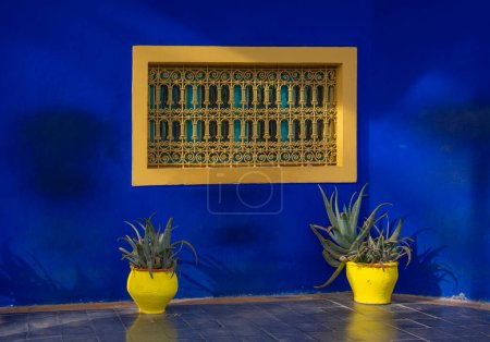 Photo for The Majorelle Garden is a botanical garden and artist's landscape garden in Marrakech, Morocco. Jardin Majorelle Cactus and tropical palms. Paradise inside the desert country - Royalty Free Image