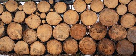 Photo pour Pile de bois de chauffage hêtre haché préparé pour l'hiver. Bois de chauffage texture journaux scène rurale fond brun. Pieux de bois en tableau abstrait. Texture du motif - image libre de droit