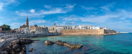 Panorama of Monopoli harbor in the Metropolitan City of Bari and region of Apulia (Puglia), Italy and beautiful cathedral Basilica Concattedrale Maria Santissima della Madia