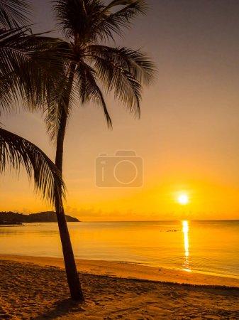 Photo pour Belle plage tropicale mer et océan avec cocotier au lever du soleil pour les voyages et les vacances - image libre de droit