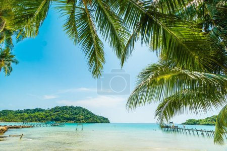 Beautiful tropical beach and sea with coconut palm tree in paradise island for travel and vacation