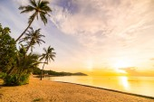 At sunset time on the tropical paradise island beach and sea with coconut palm tree for holiday and vacation