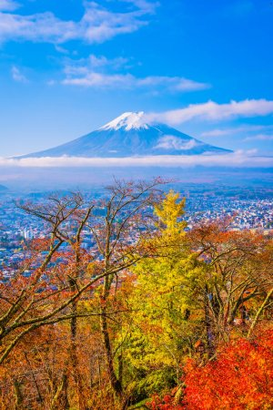 Beautiful landscape of mountain fuji around maple leaf tree with white cloud and blue sky in autumn season at Yamanashi Japan