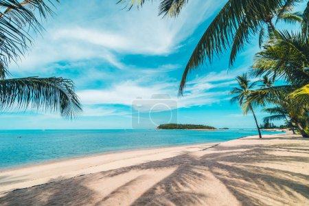 Photo pour Belle plage tropicale mer et sable avec cocotier sur ciel bleu et nuage blanc pour les voyages et les vacances - image libre de droit