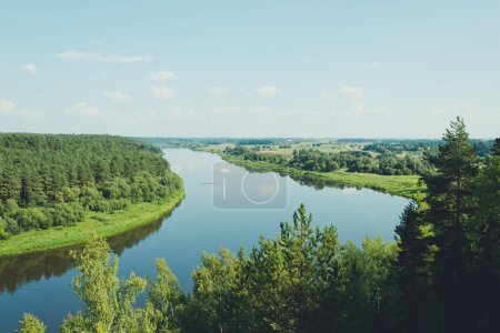 Photo for River and forest with trees  on background - Royalty Free Image