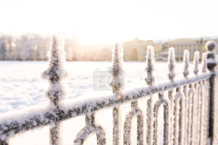 forged fence in frost at sunset. Winter weather