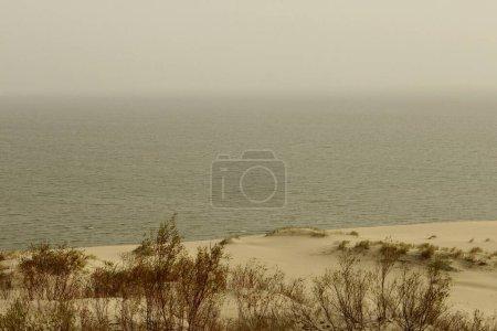 Photo pour La flèche de Courlande, mer Baltique - image libre de droit