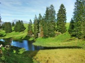 A small lake on the grassy plateau of the Churfirsten mountain range - Canton of St. Gallen, Switzerland