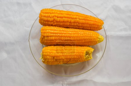 Corns that was freshly plucked from their tries we...