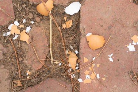 Photo pour Coquille d'oeuf sur le sol en pierre gros plan. oeuf de poulet écrasé. la nourriture pour les poulets - image libre de droit