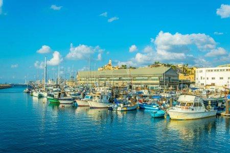 Boats mooring in the port of Jaffa, Tel Aviv, Israel