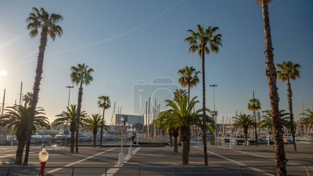 Photo for Sunrise at Port Vell promenade location with palm trees. Streets of Barcelona, Spain - Royalty Free Image
