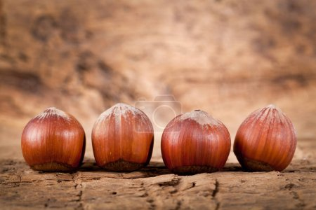 Hazelnuts on old wooden background