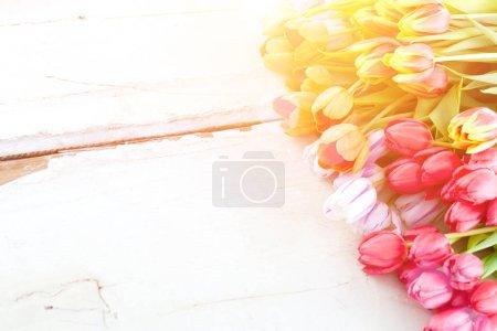 Photo pour Fond de Pâques. Tulipes printanières colorées sur fond en bois - image libre de droit