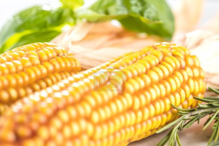 Photo for Fresh corn on cobs on rustic wooden table, closeup - Royalty Free Image