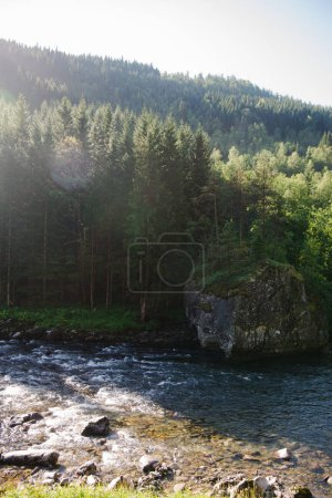 beautiful landscape with river and forest in Gudvangen, Neirofjord, Norway