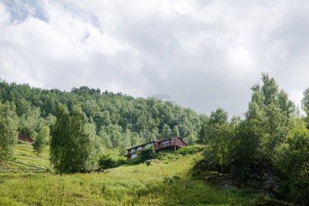 Photo pour Vue faible angle de maison en bois et des plantes vertes dans les montagnes, Aurlandsfjord, Flam (Aurlandsfjorden), Norvège - image libre de droit