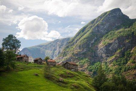 Photo pour Confortables maisons en bois sur la colline verdoyante de majestueuses montagnes, Aurlandsfjord, Flam (Aurlandsfjorden), Norvège - image libre de droit