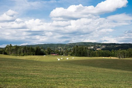 Photo for Scenic view of green agricultural field under cloudy sky, Hamar, Hedmark, Norway - Royalty Free Image
