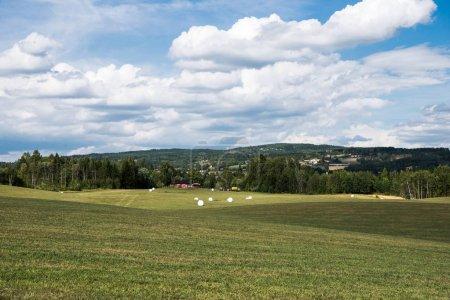 Photo pour Vue panoramique du domaine agricole en vert sous le ciel nuageux, Hamar, Hedmark, Norvège - image libre de droit