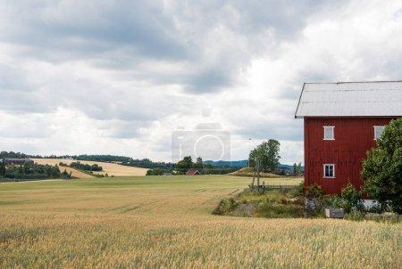 Photo pour Champ agricole et bâtiment rouge, Hamar, Hedmark, Norvège - image libre de droit