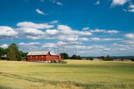rural scene with field and houses under blue sky, Hamar, Hedmark, Norway