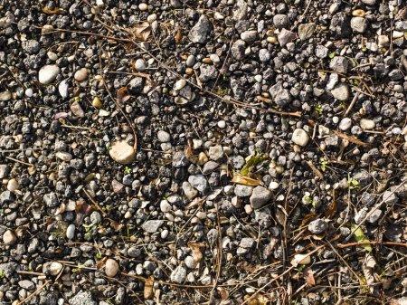 Photo pour Fond avec wet rond galet pierres - image libre de droit