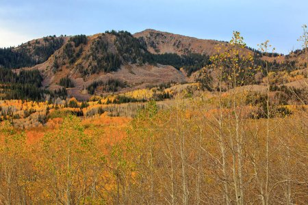 Autumn Wasatch mountains panorama, Utah, USA