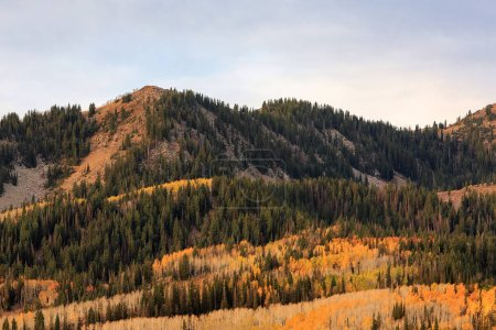 Photo for Autumn Wasatch mountains panorama, Utah, USA - Royalty Free Image