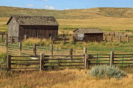 Photo for Rural wooden barns at countryside, idyllic summer landscape - Royalty Free Image