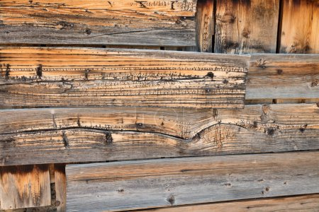 Photo for Old wooden planks background, timber texture - Royalty Free Image