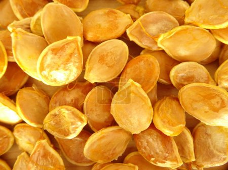 Photo for Group of roasted Pumpkin Seeds - Royalty Free Image