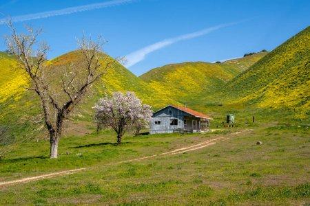 Abandoned shack near Carrizo Plain National Monume...