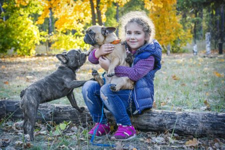 Photo for In autumn, a bright sunny day in the forest, a little girl plays with two dogs with bulldogs. She sits on a log and holds one dog in her arms. - Royalty Free Image