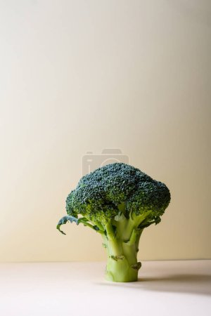 Photo for Fresh raw broccoli on light surface, healthy food concepts - Royalty Free Image