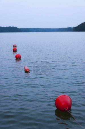 Photo for Red buoys on the lake at sunset. Secure swimming area. - Royalty Free Image