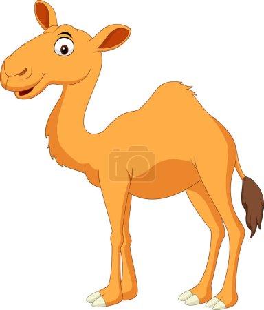 Illustration cute camel cartoon