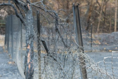 Fence and property damaged by Thomas Fire on Highway 150