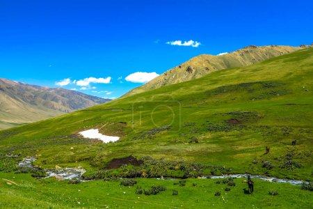 Photo pour Voiture route vers le lac Song Kul avec des chevaux et des montagnes enneigées Paysage - image libre de droit