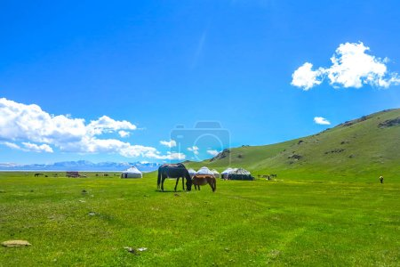 Photo pour Song Kul Lake View Point with Horses Yurt Camp and Snow Capped Moldo Too Montagnes Paysage - image libre de droit