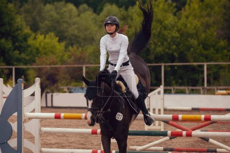 Photo for Equestrian sport - young girl rides on horse. - Royalty Free Image