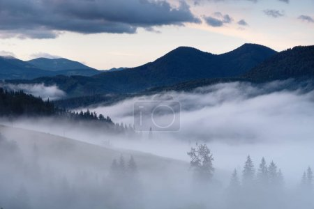 Photo for Mountain valley in the mist. Beautiful natural landscape at the summer time during sunrise - Royalty Free Image