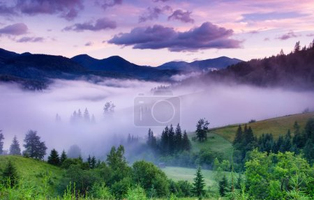 Photo for Mountains and forest in the fog. Beautiful natural landscape at the summer time during sunrise. Forest and mountains. Mountain landscape-image - Royalty Free Image