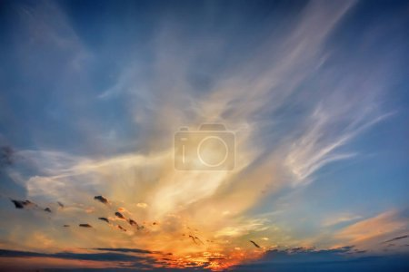 Photo for Blue sky with clouds at sunset. - Royalty Free Image