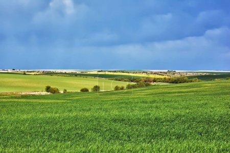 Photo pour Paysage rural - prés avec des nuages d'orage au-dessus d'eux. - image libre de droit