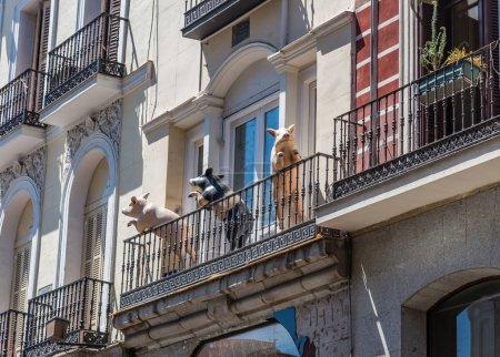 drei lustige Schweine stehen auf dem Balkon eines alten Hauses in Spanien